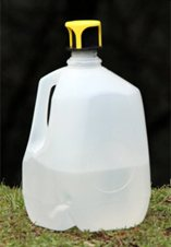 Lowest Cost, Most Ecological Fly Trap.